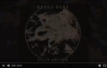 SOYUZ BEAR - Black Phlegm (Full Album)